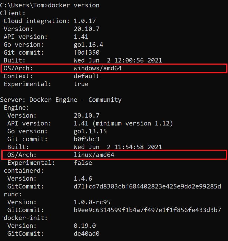 Docker version output shows Docker daemon running in Linux